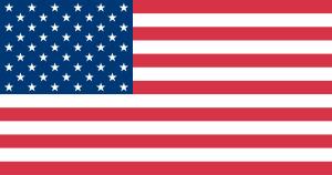 U.S. Flag Logo